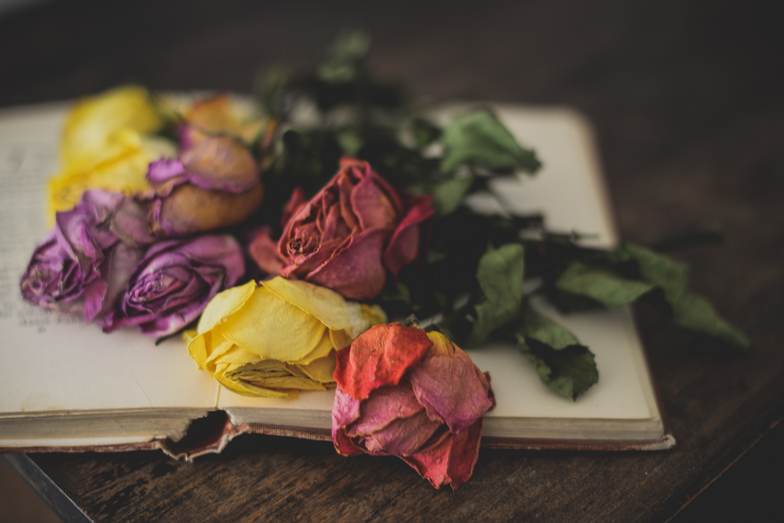 dried roses and book