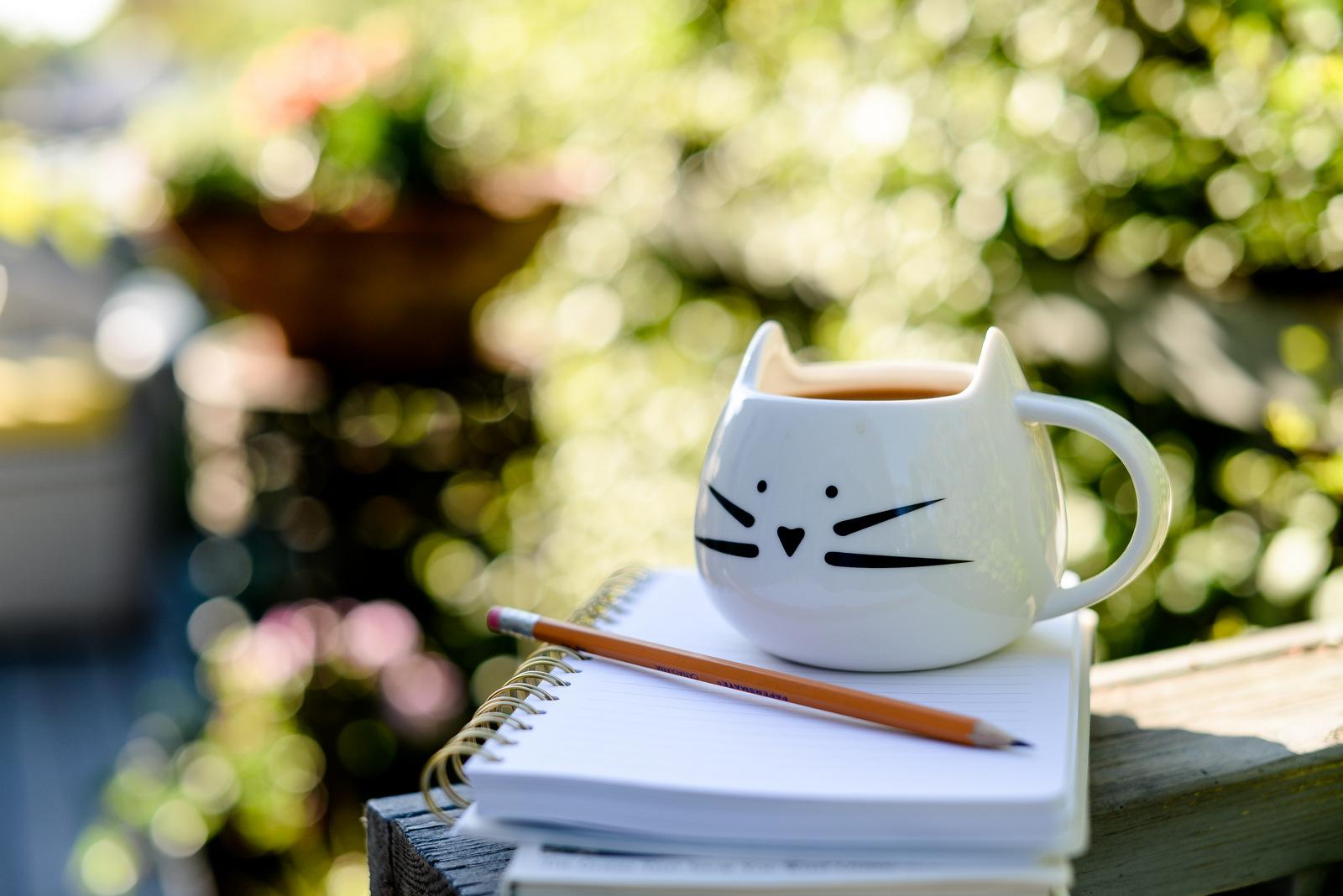 cat mug and pencil