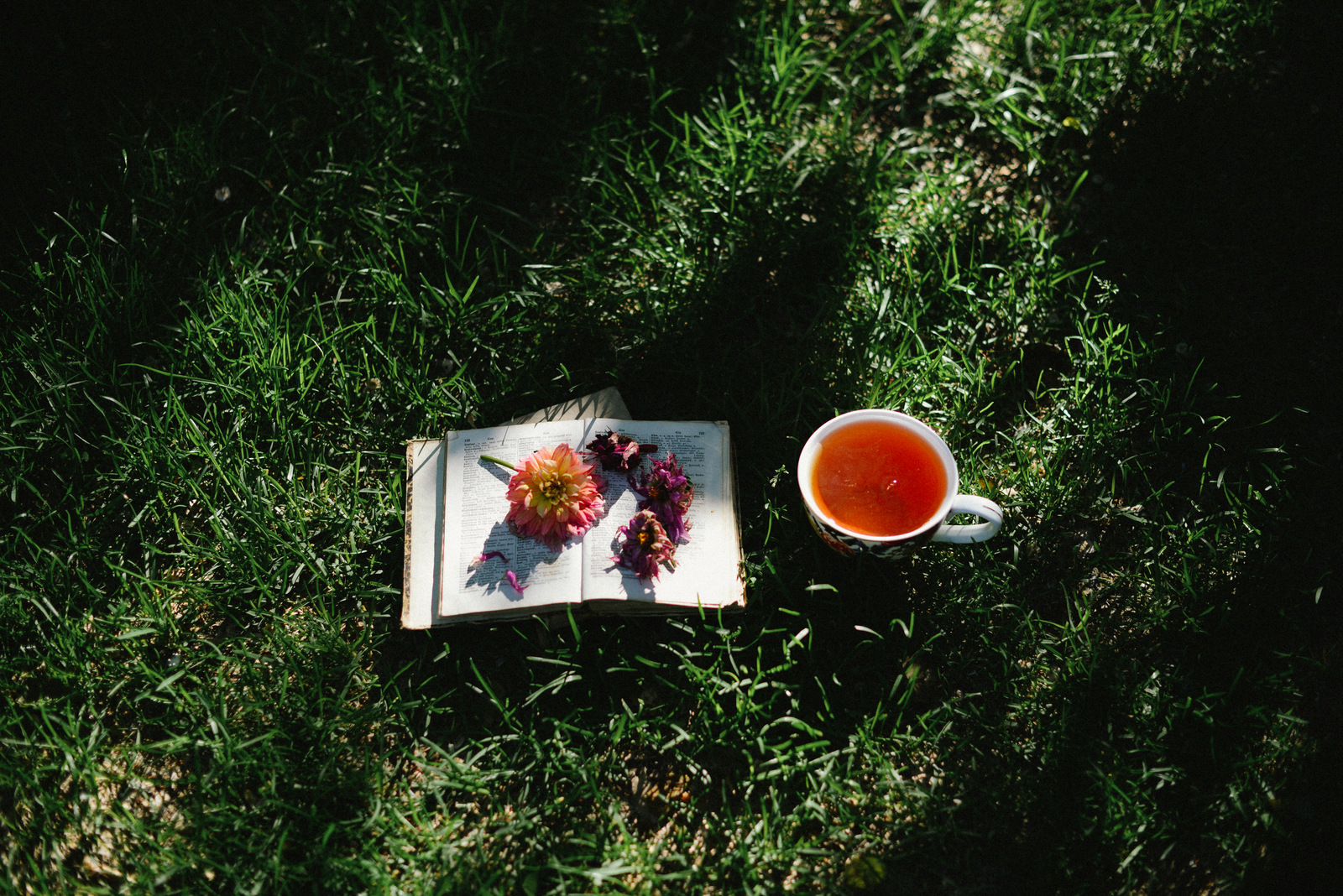 tea and flowers and book