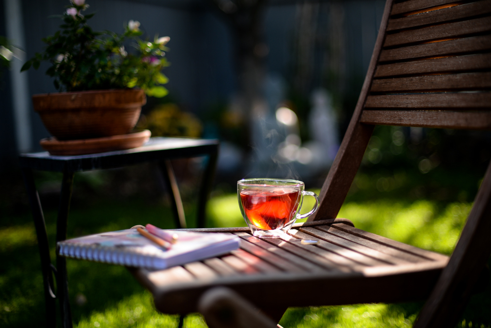 tea in the backyard