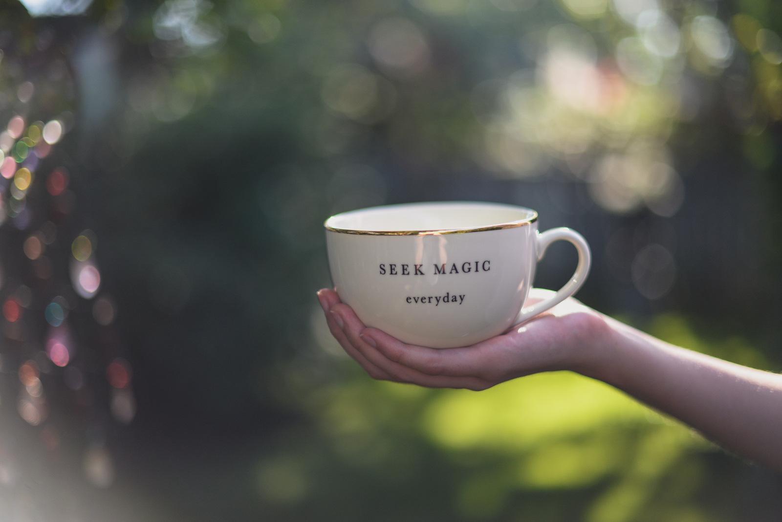 seek magic everyday