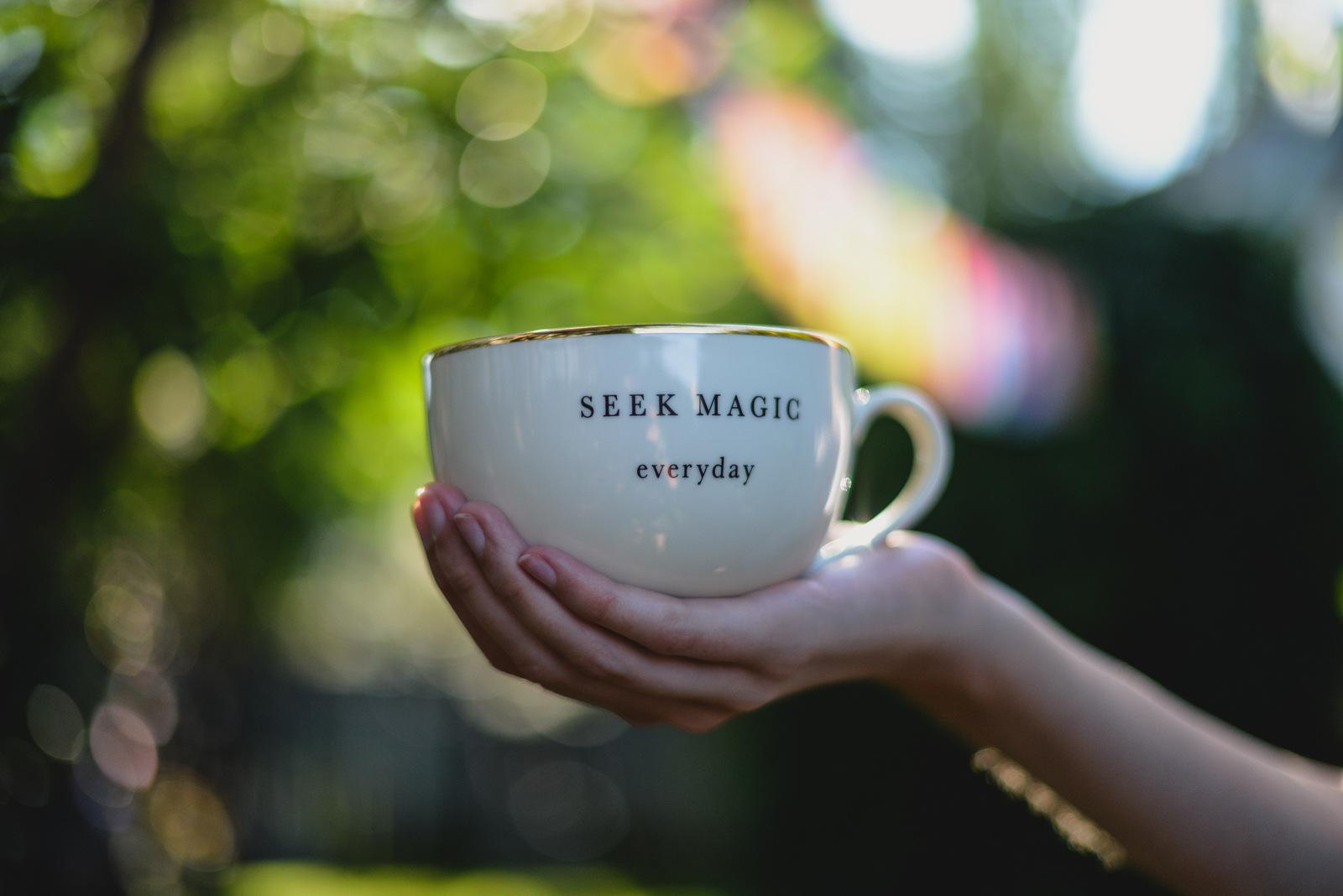 seek magic