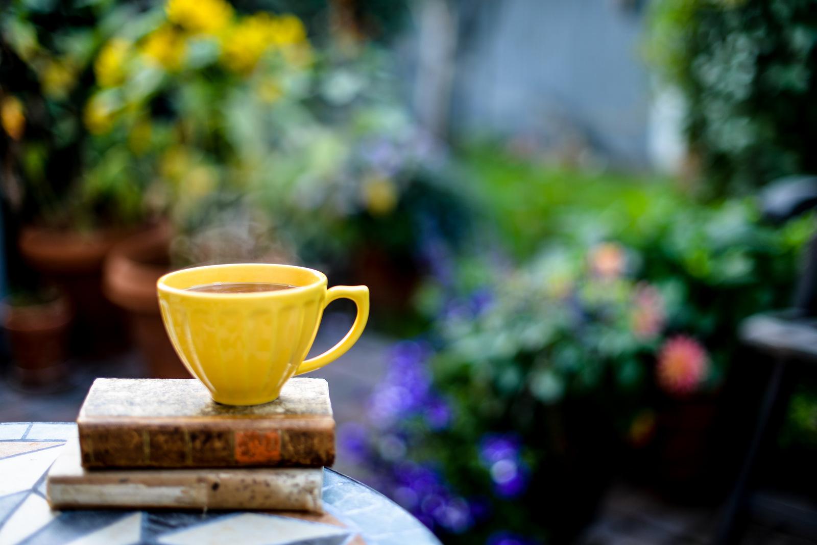 yellow teacup