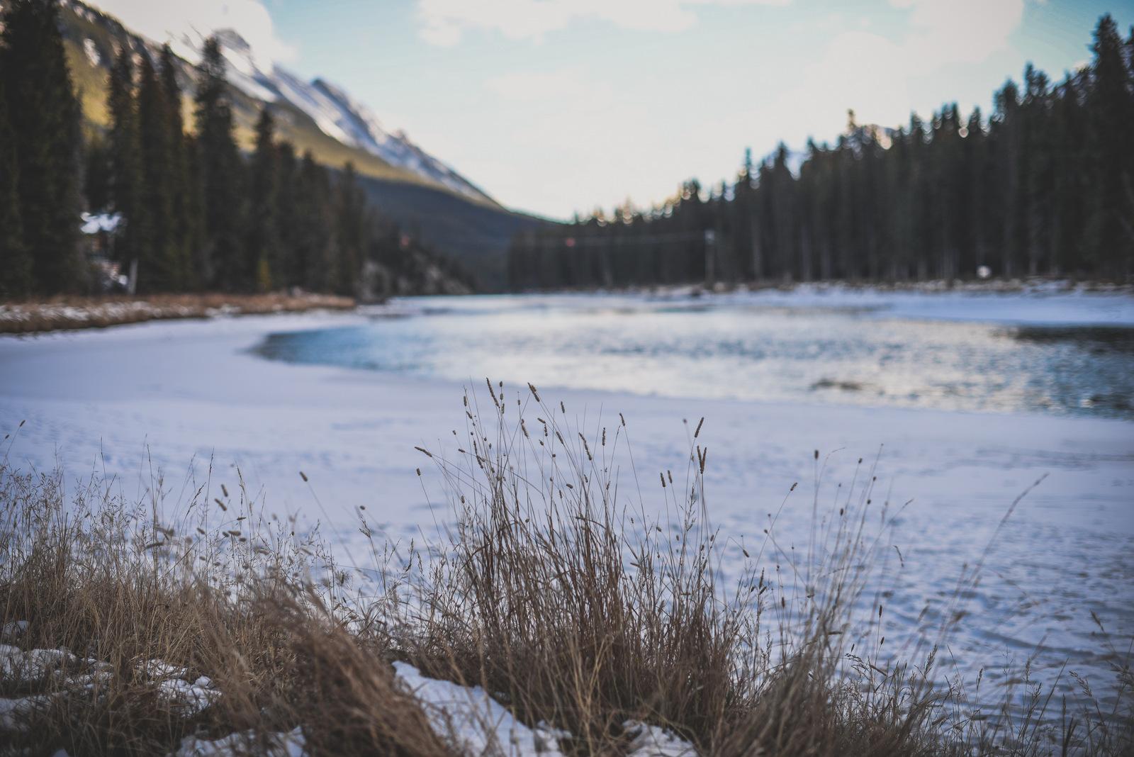 1-Banff November 2018-45.jpg