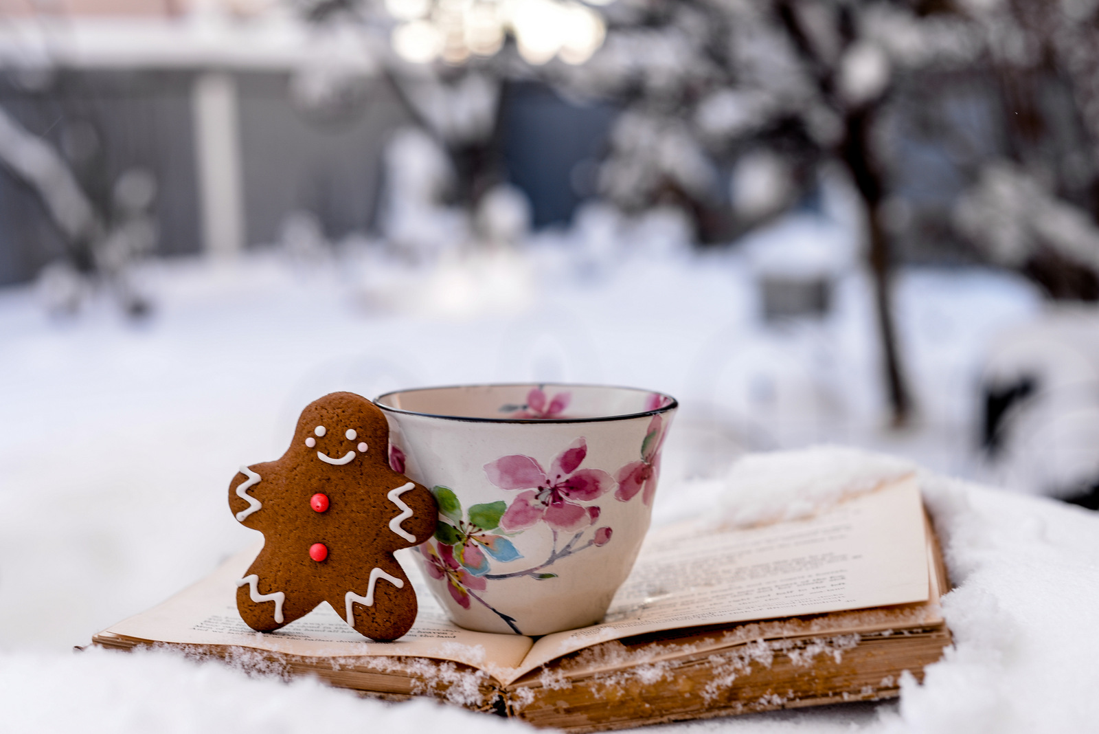 tea and gingerbread in the snow