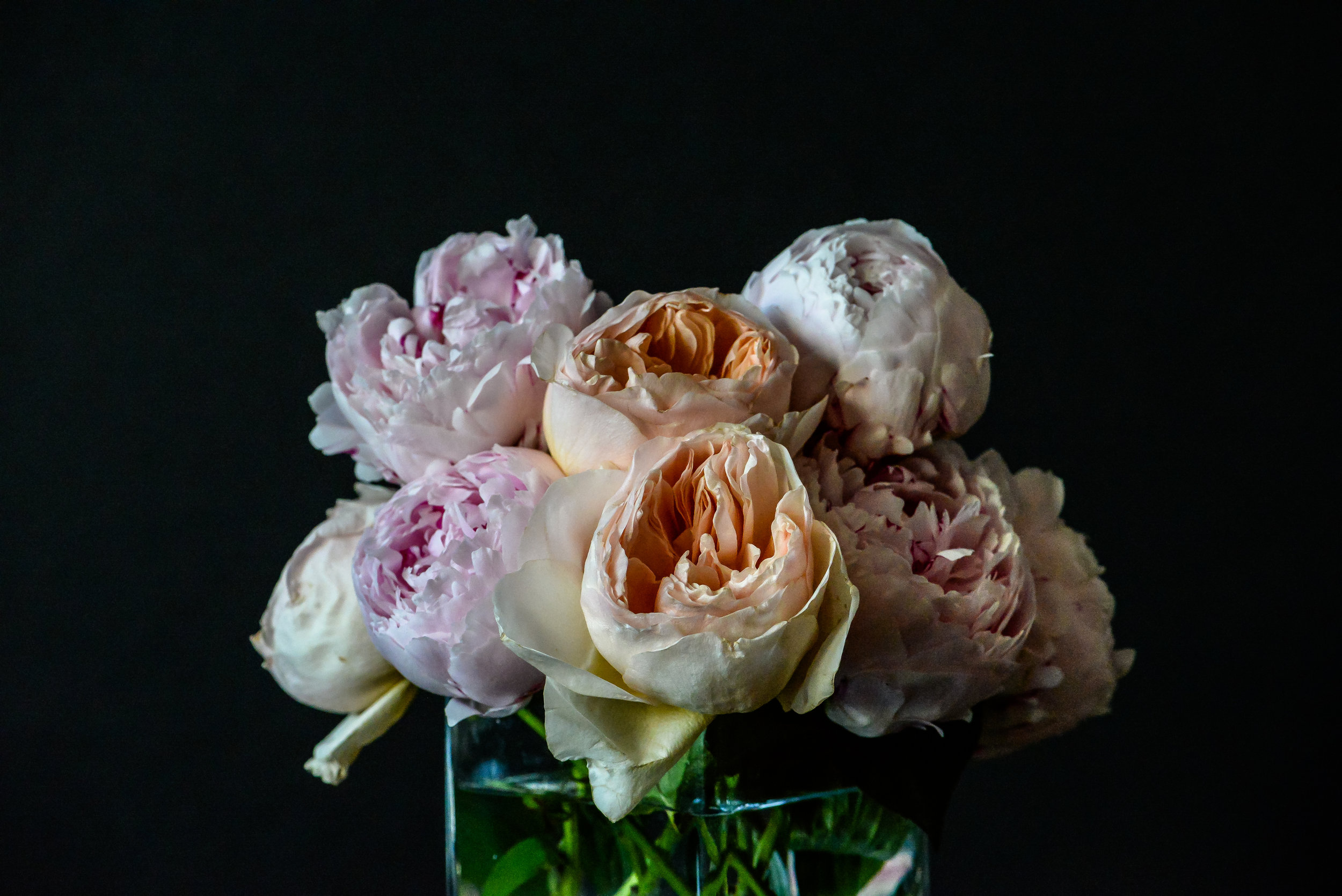 roses and peonies by shawna lemay
