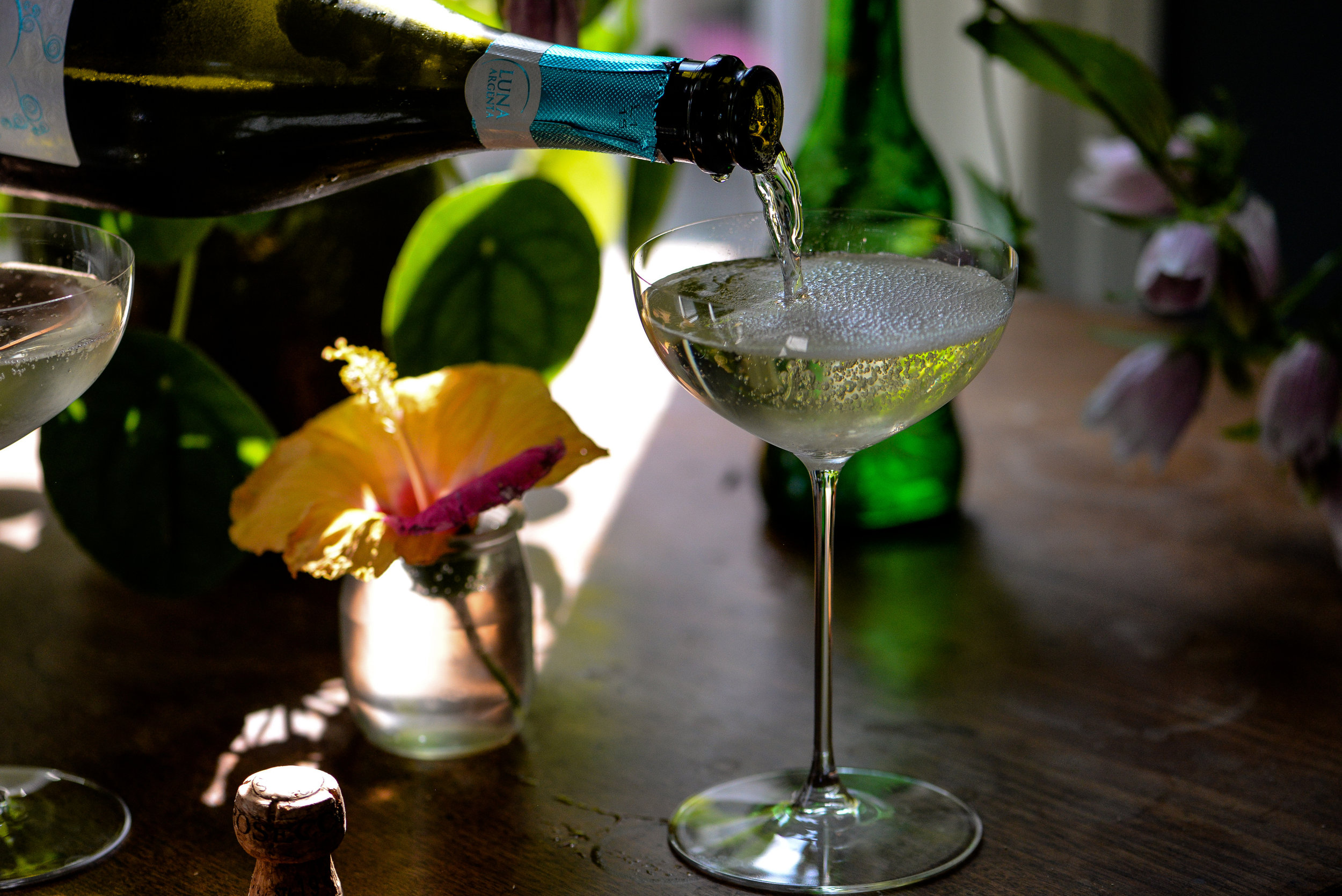 pro secco by shawna lemay