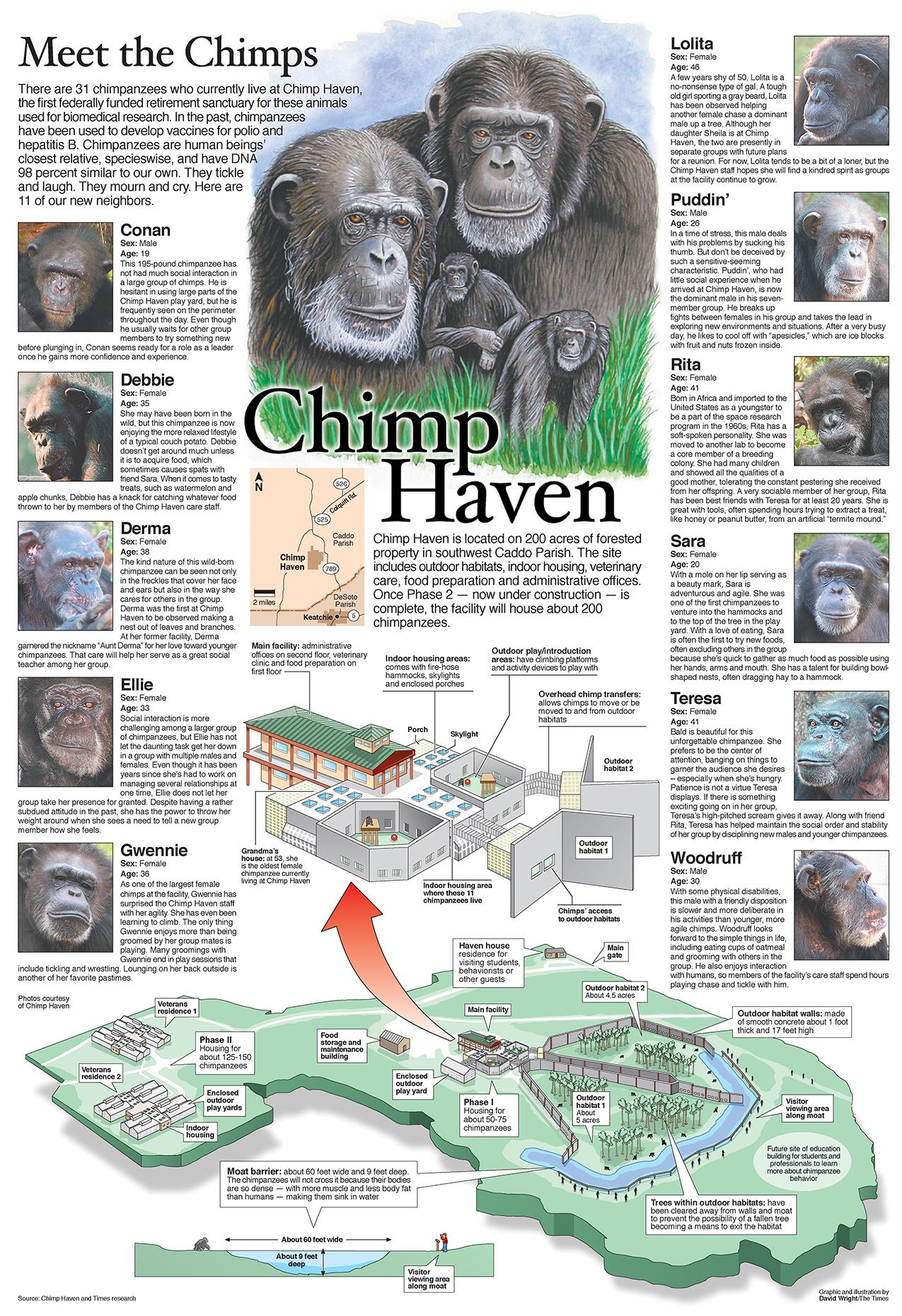Chimp haven graphic SMALL.jpg