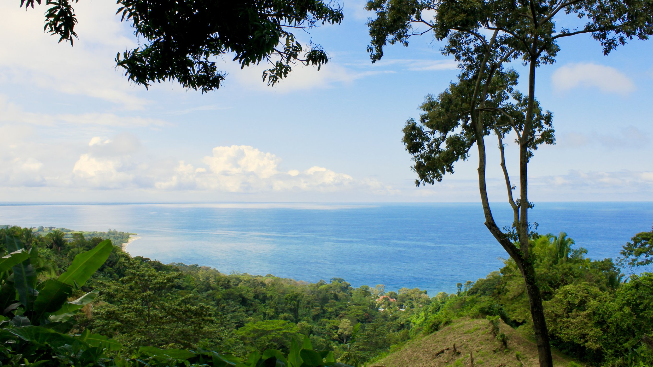 This is nowhere near the Darién Gap. This is actually Puerto Cortes, Honduras.