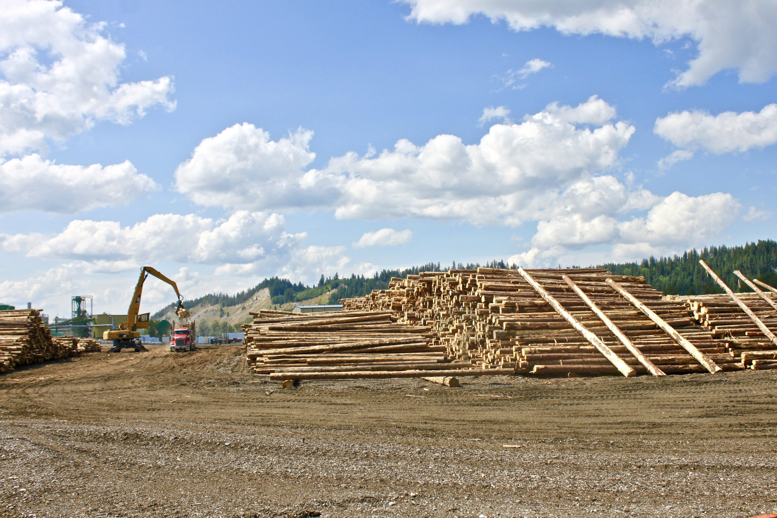 In the 1980s lumber was an economic driver of Prince George, given it at the time the largest number of millionaires in Canada. This industry has since diminished.