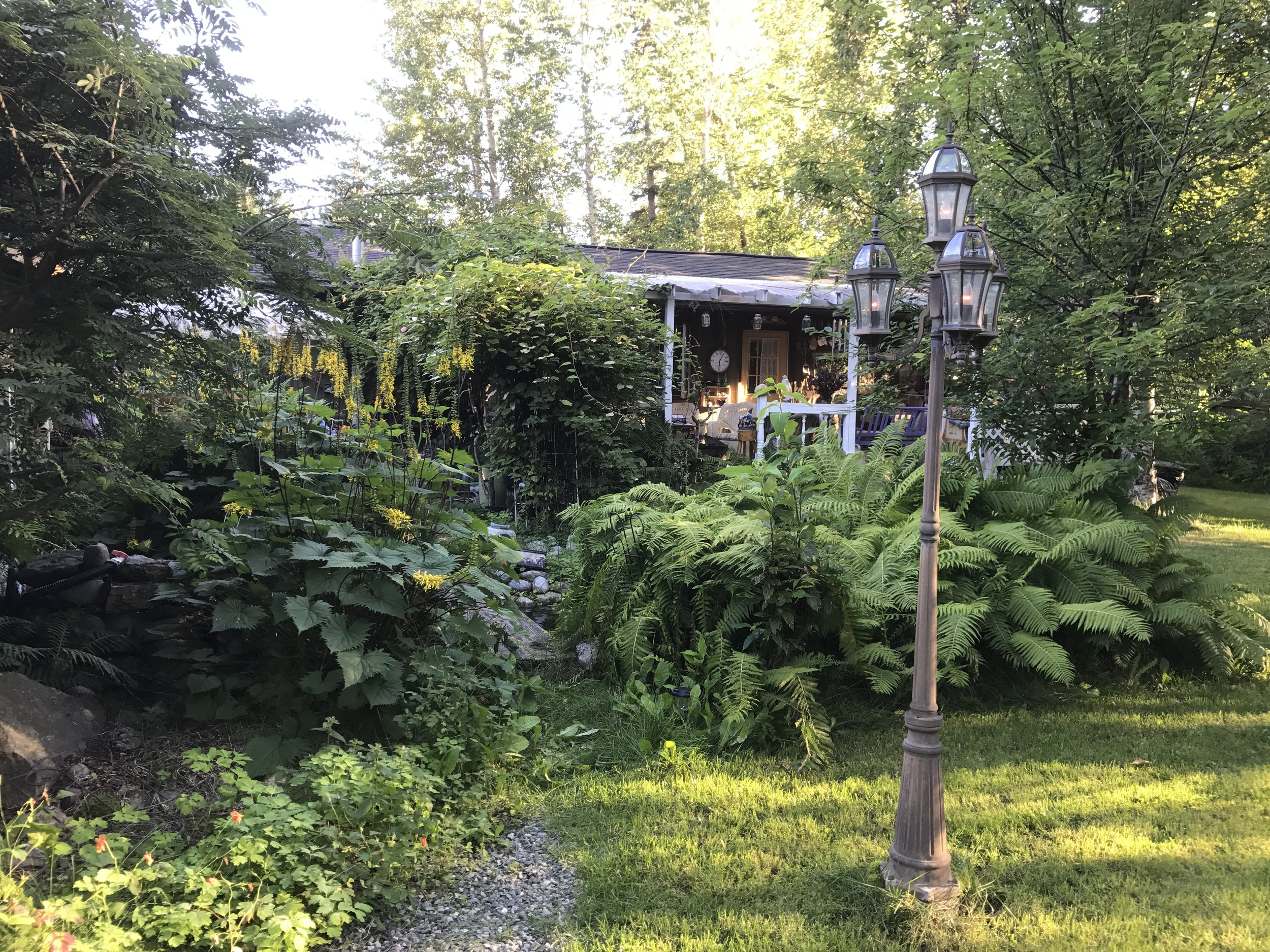 The backyard of their home in Wasilla is a magnificent garden.