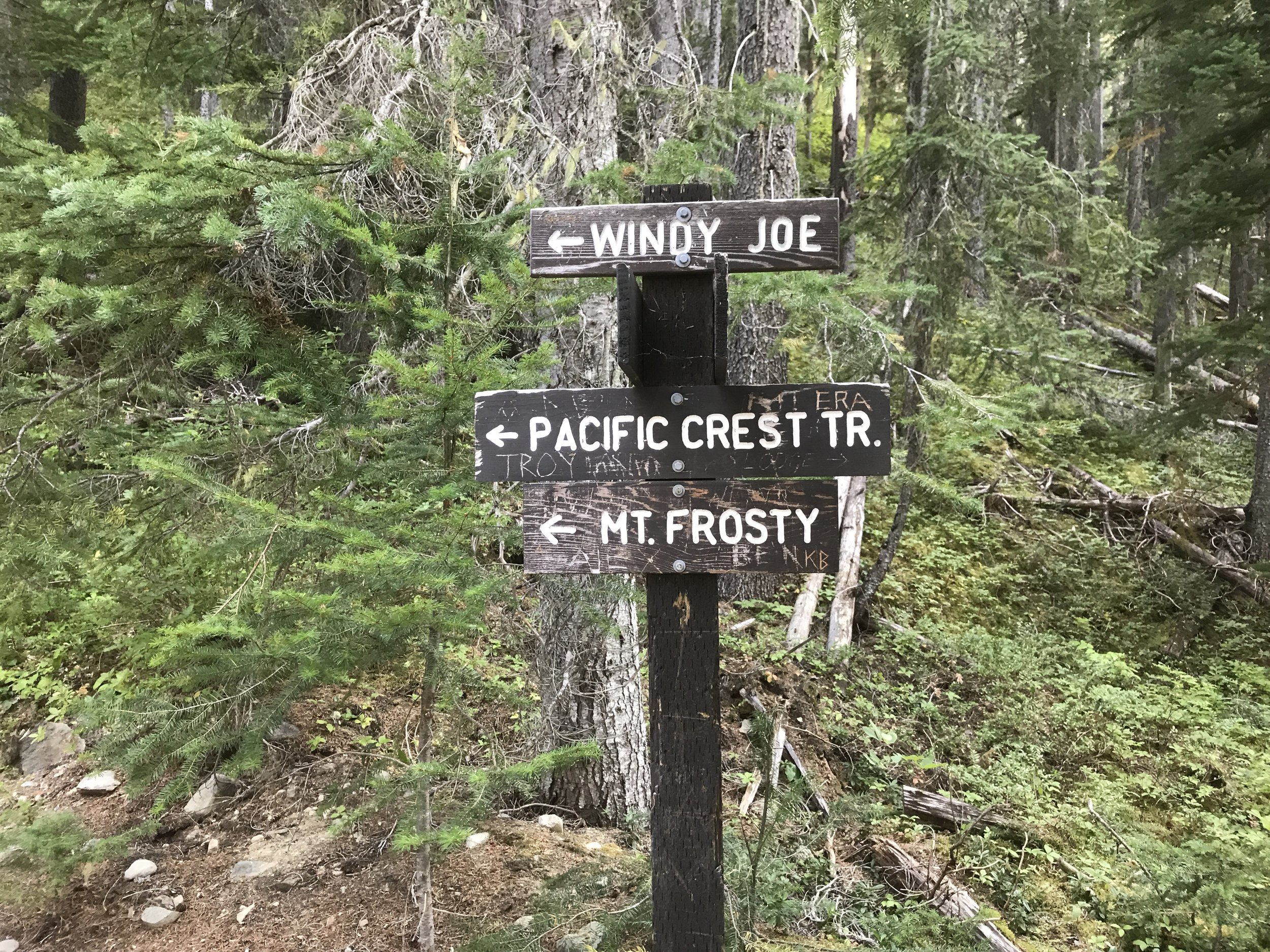 I camped in Manning Park one night and hiked a couple miles from the trailhead towards the US border.