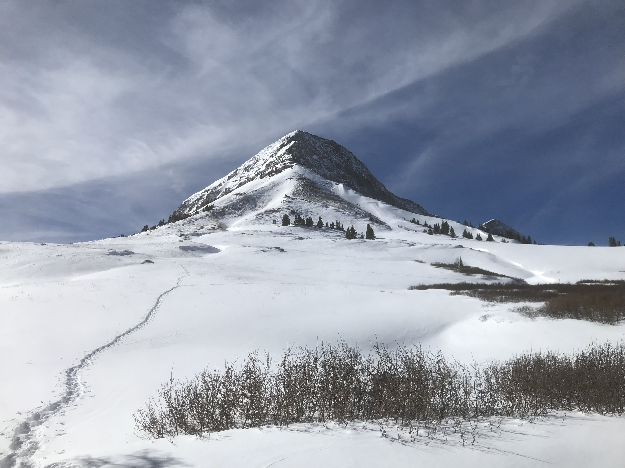 Snowshoeing near Durango Colorado to the snow covered meadow below Engineer Mountain.