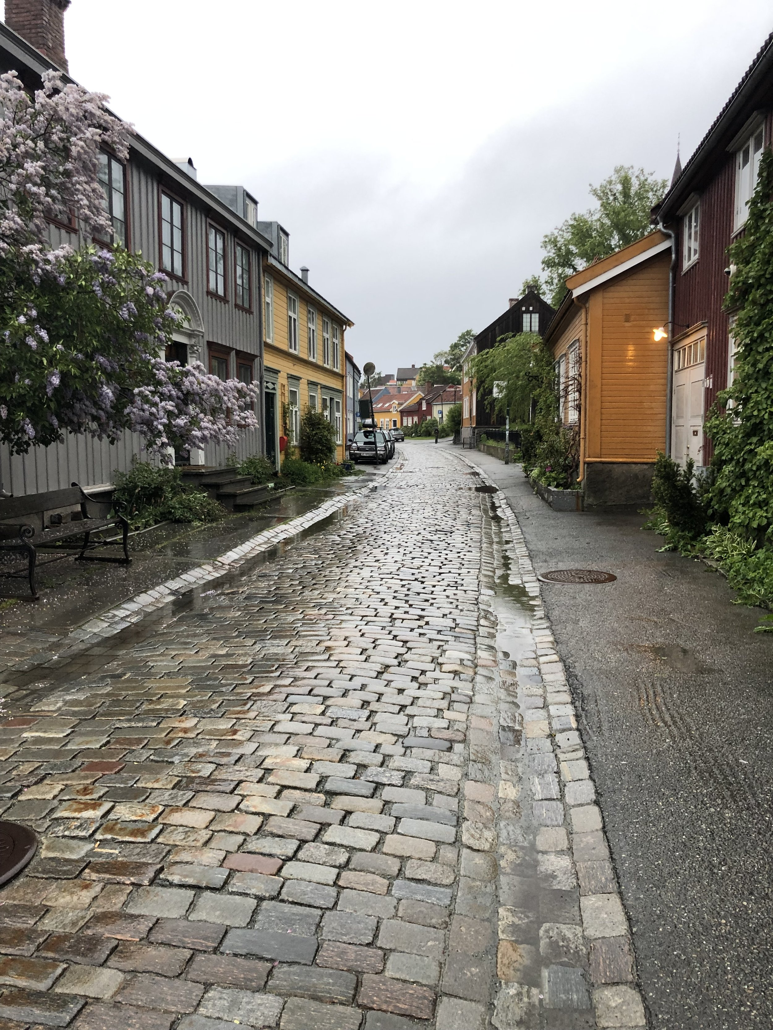 Old cobblestone street outside of the apartment we rented.