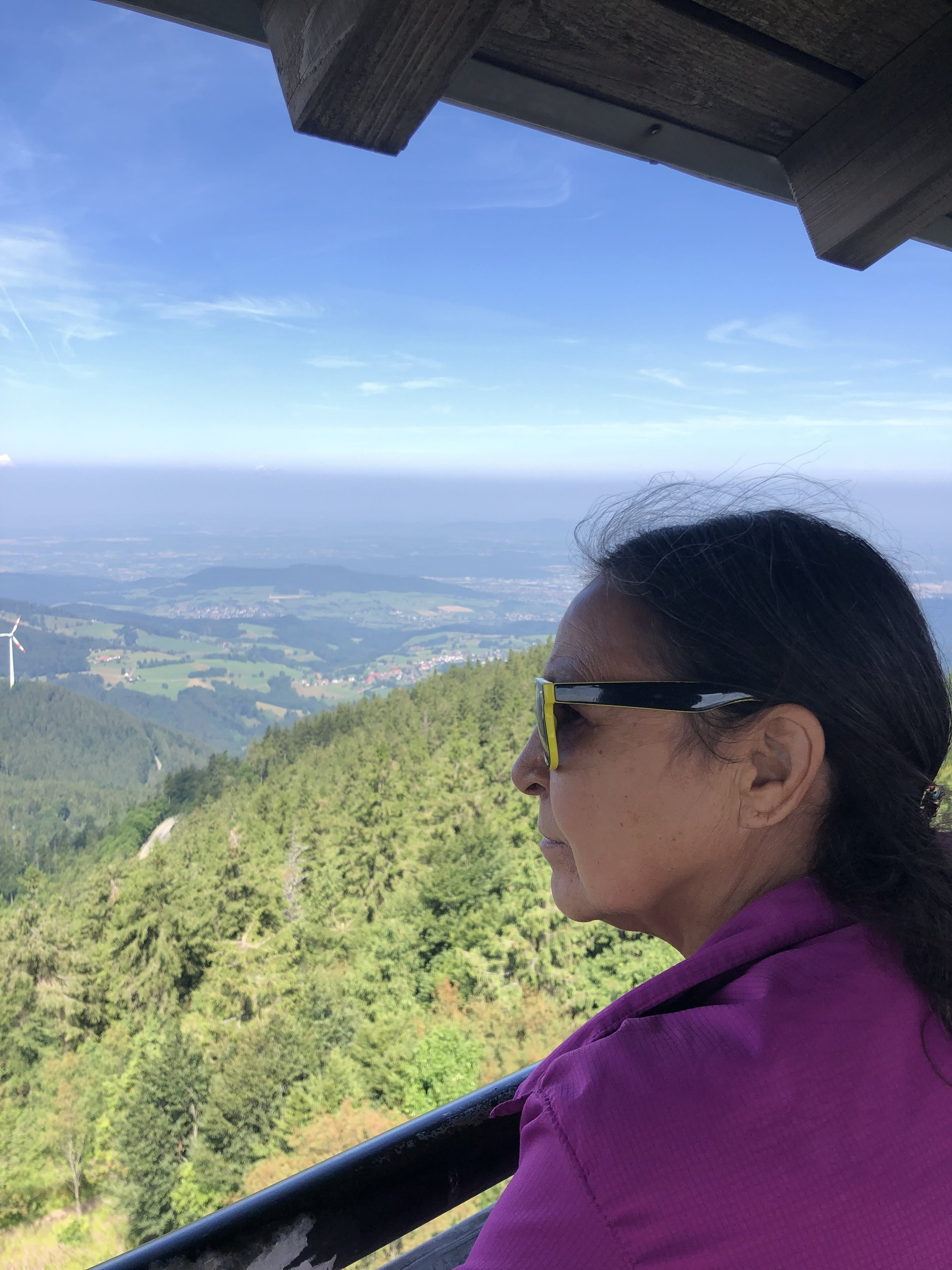 From an observation tower in the Black Forest we could see Switzerland and France. We were told that on a clear day Igor Mountain in the Alps was visible.