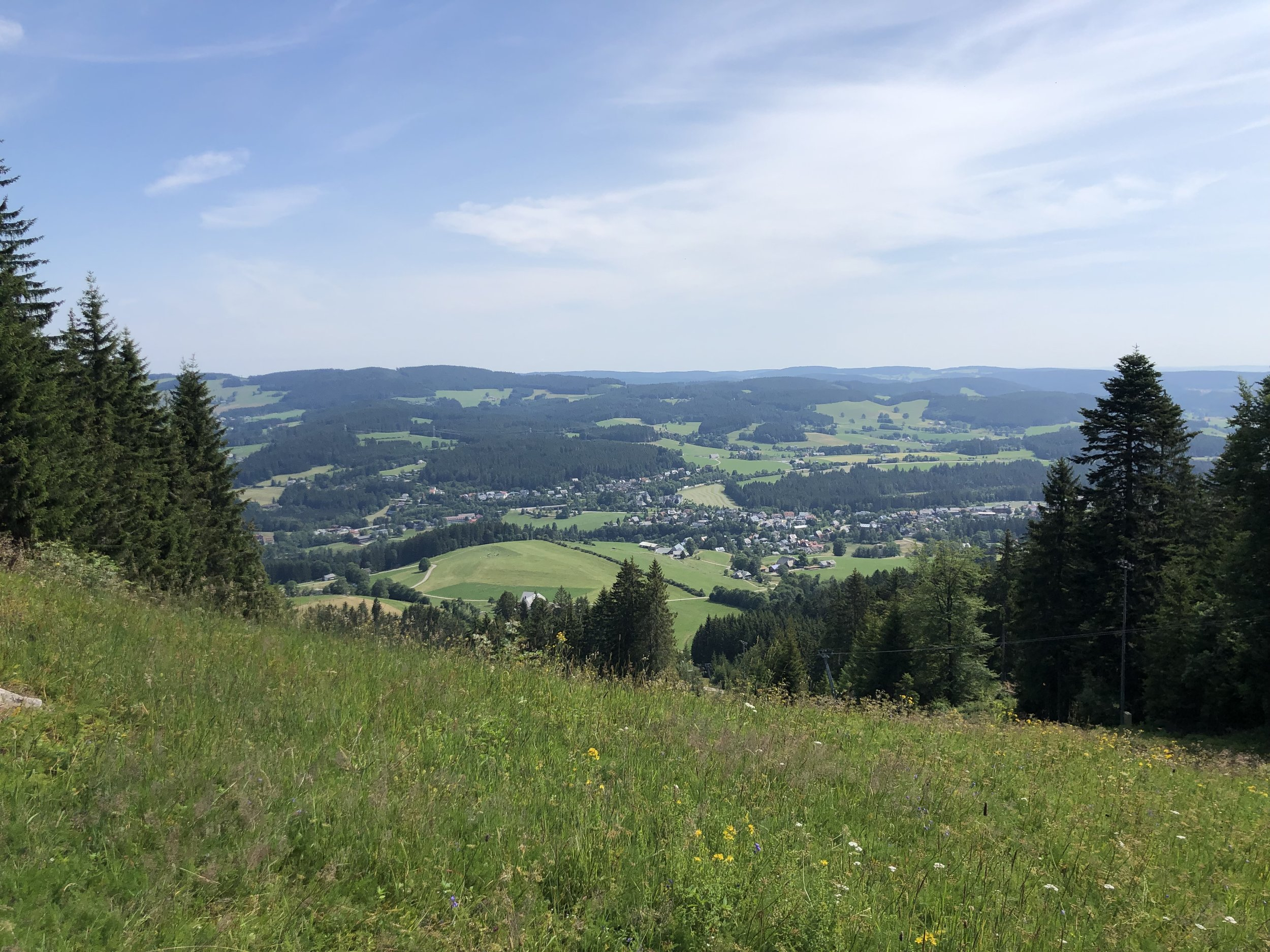 One of the many awesome views during our hike in the Black Forest region.