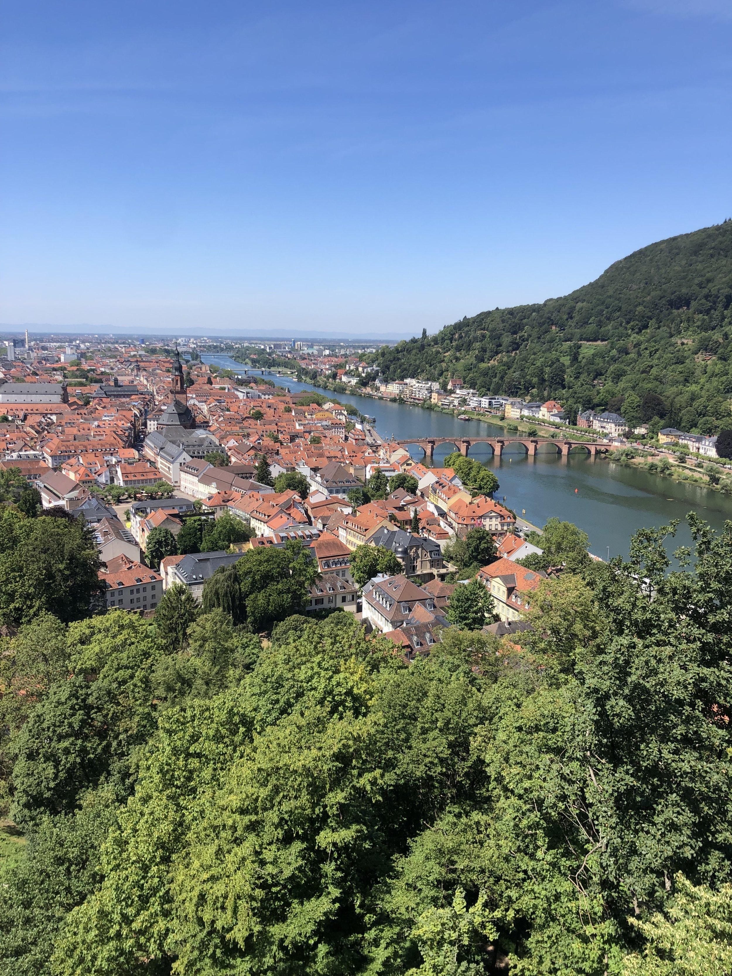 Heidelberg as seen from a trail near the castle.