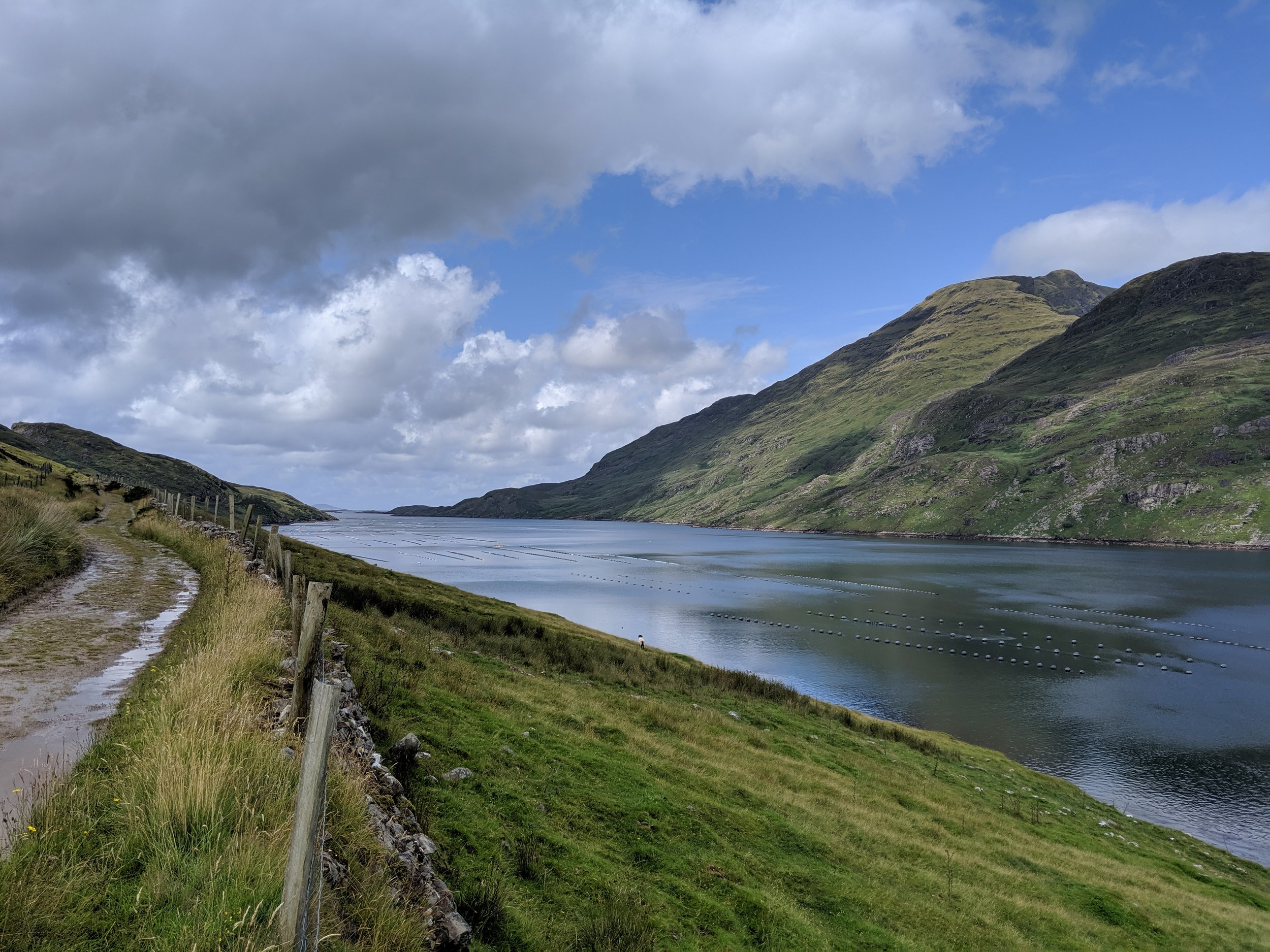 This photo was taken from the Famine Road looking westward down the Killary Fjord. During the famine of 1847 this road was used by starving Irish peasants as the made their way to the various ports along the coast where they boarded ships to take them to America or another country.  Floating in the fjord are buoys used for shellfish farming and harvesting.