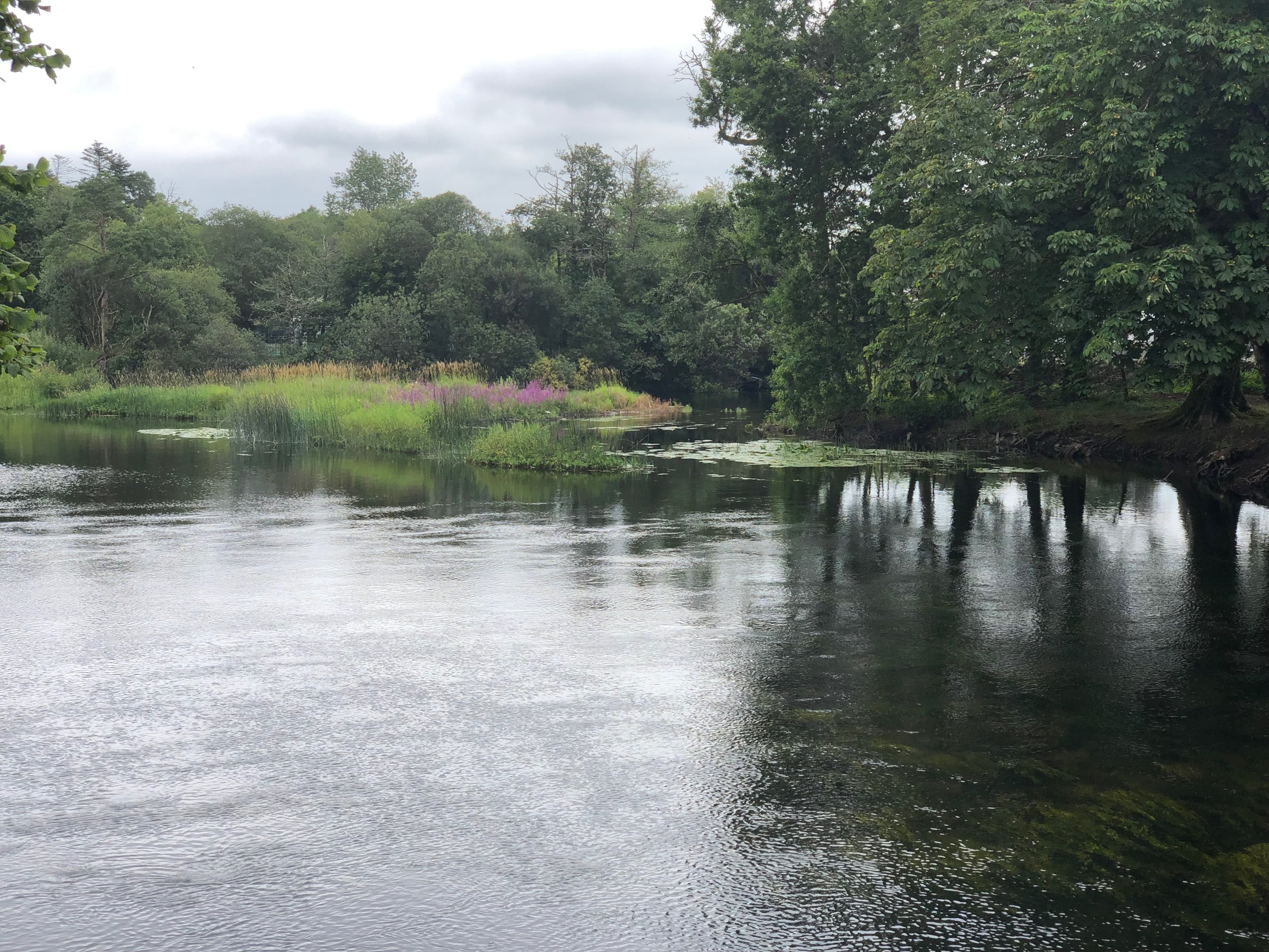 A picture perfect river near the town of Cong.