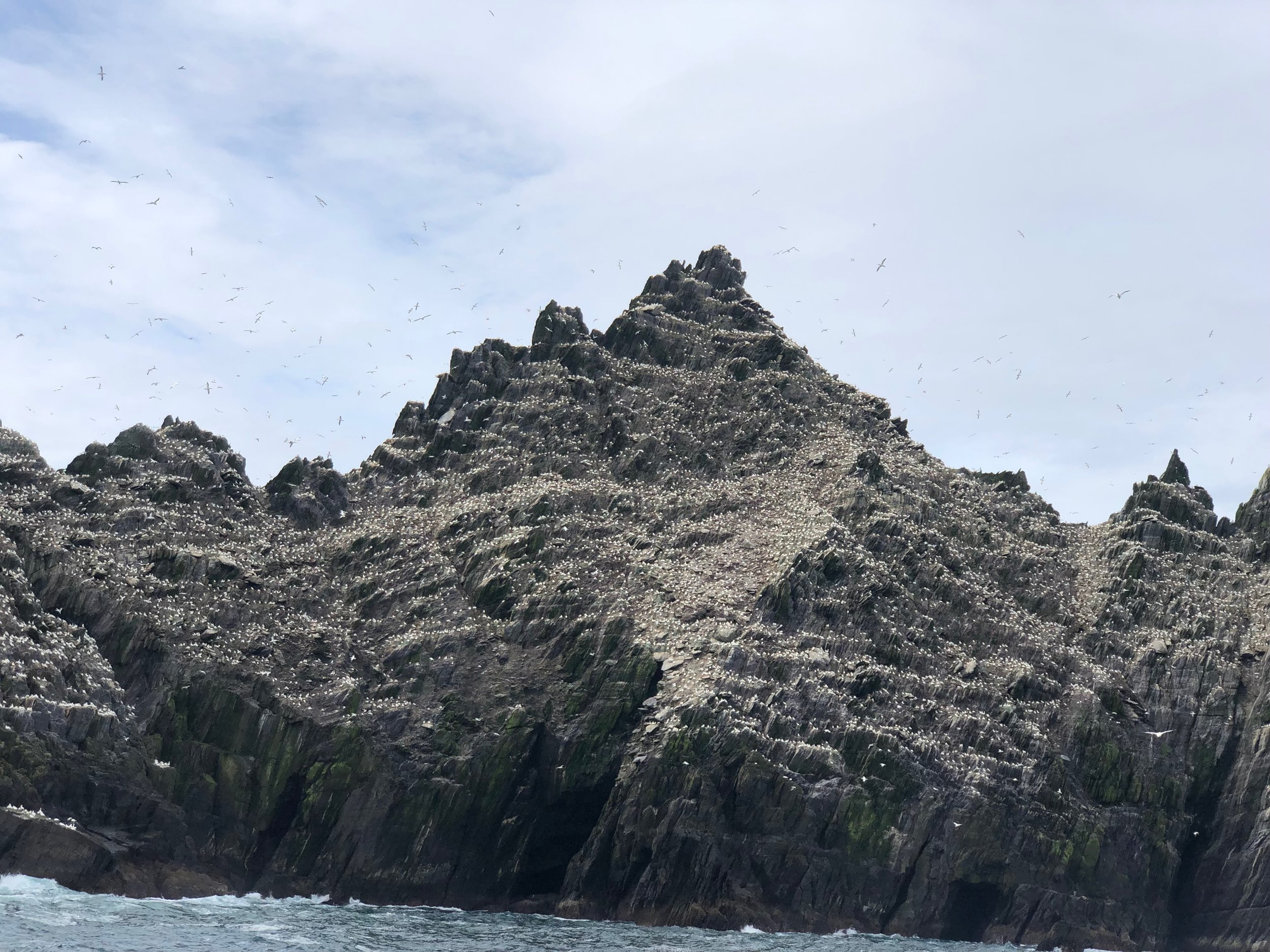 This island near Skellig Michael is home to a colony of 70,000 gannets. The gannets are the whit spots you see against the dark rock. Almost looked they had a recent snow fall.