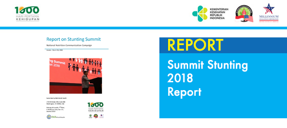 Summit Stunting 2018 Report