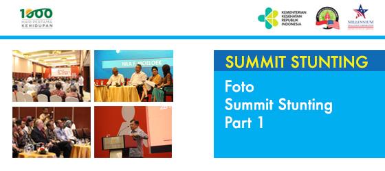 Foto Summit Stunting Part 1