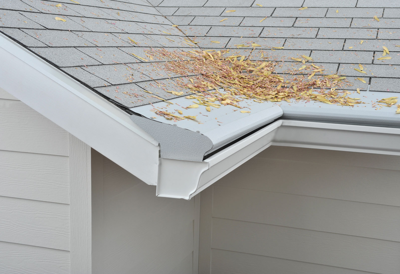 Clean your gutters and downspouts  -