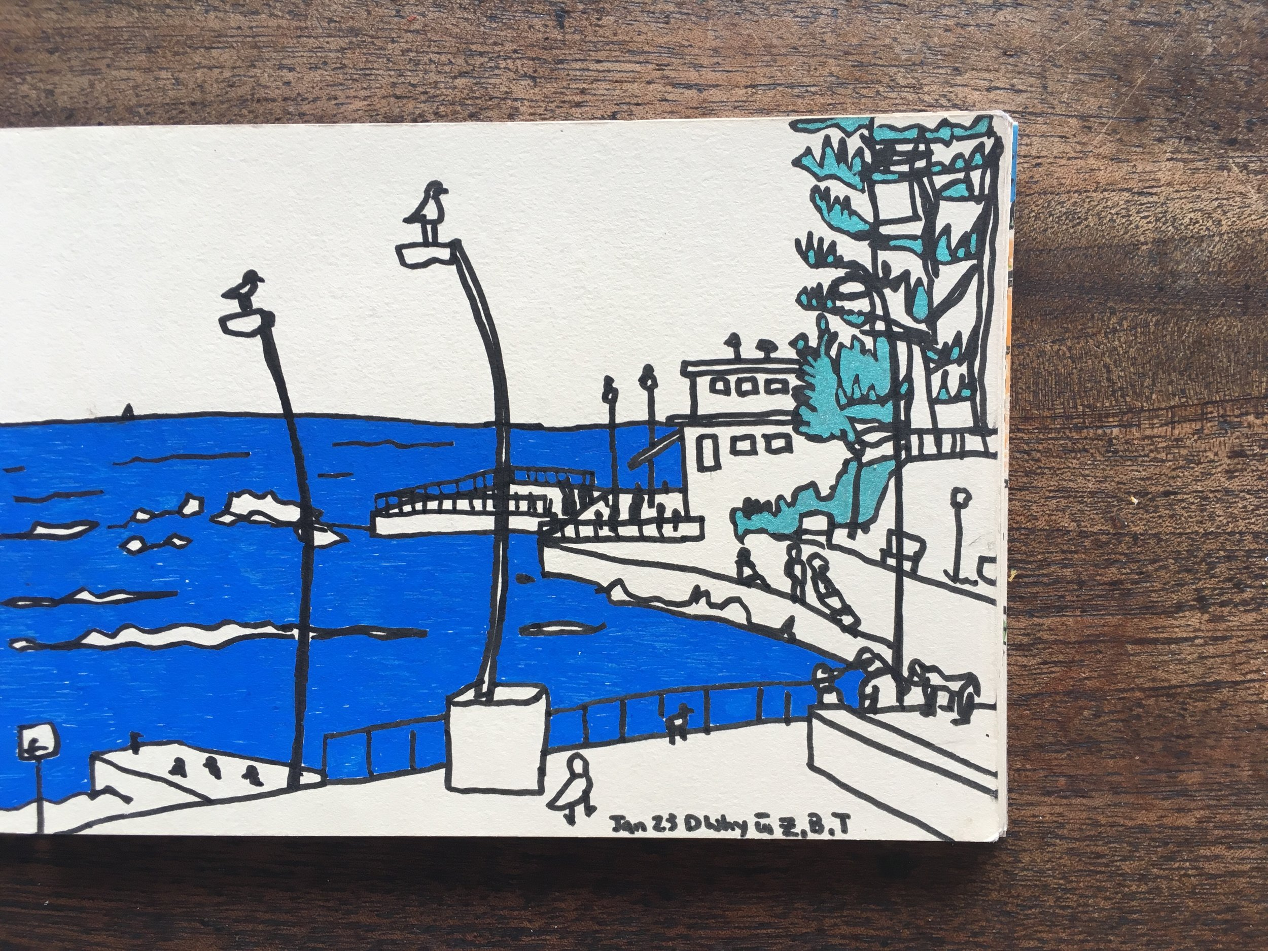 Dee Why, NSW, Sarah Campbell Illustration
