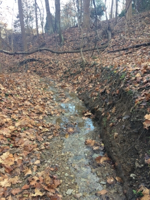 Streambank erosion. Stuff we want to know about!