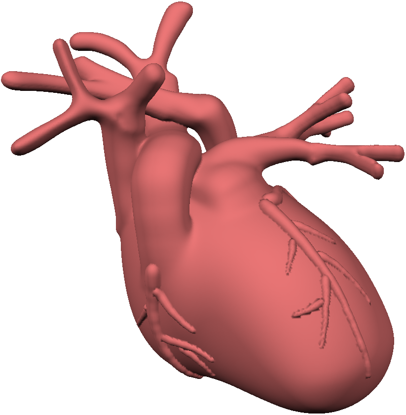 BlobTree models are great for organic forms. This isn't really anything like a real heart, but it was very fast to make!