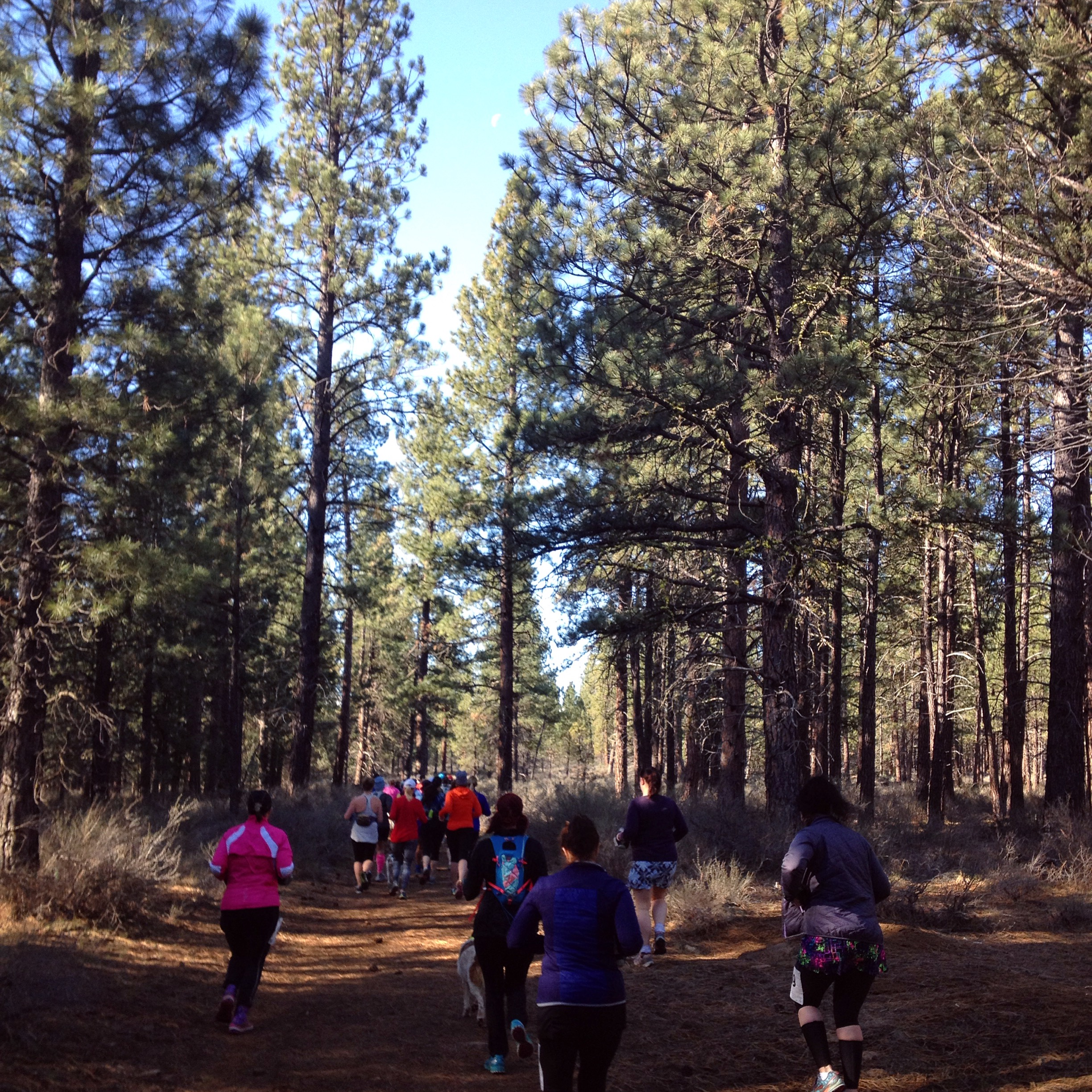 The beginning of the race started with a mob of runners on a rapidly narrowing trail.