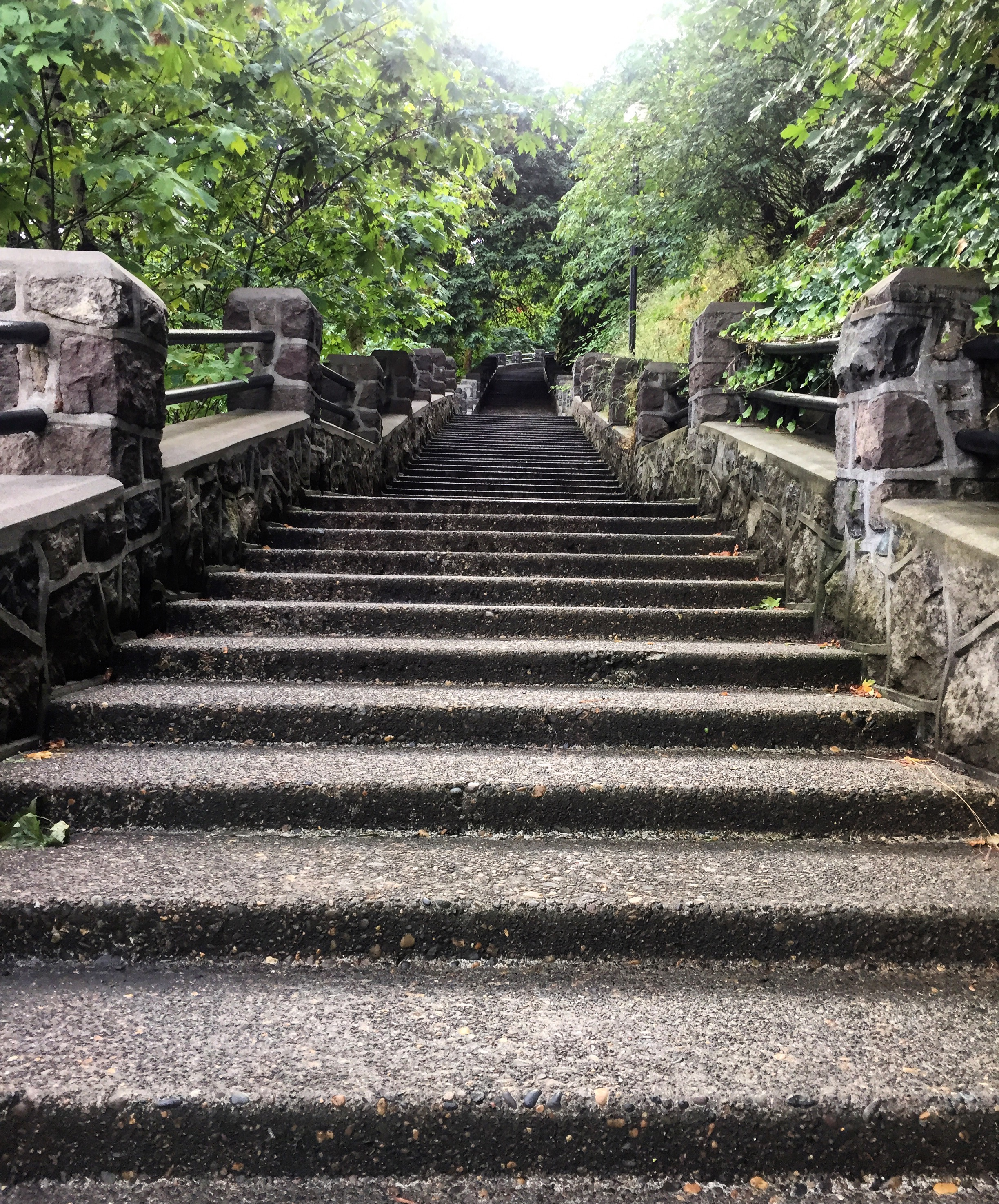 Singer Hill Creek Stairs