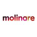 molinare.png