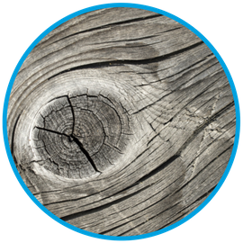 Wood grain photo