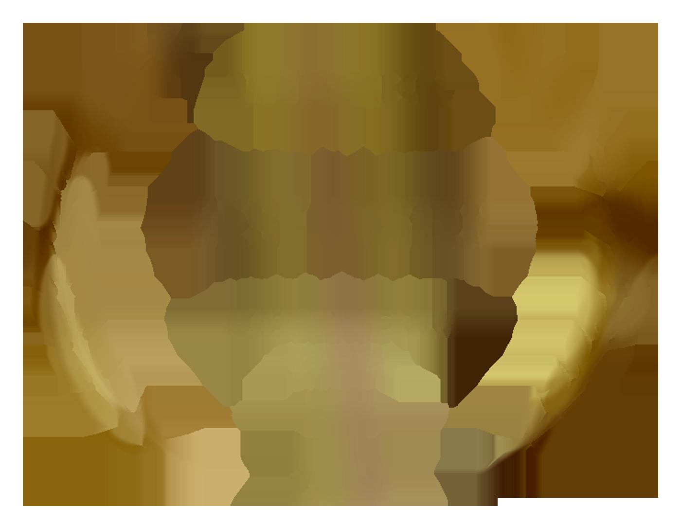 Fragments Winner Best Poster Alternative Film Festival design by Cesare Asaro 2018