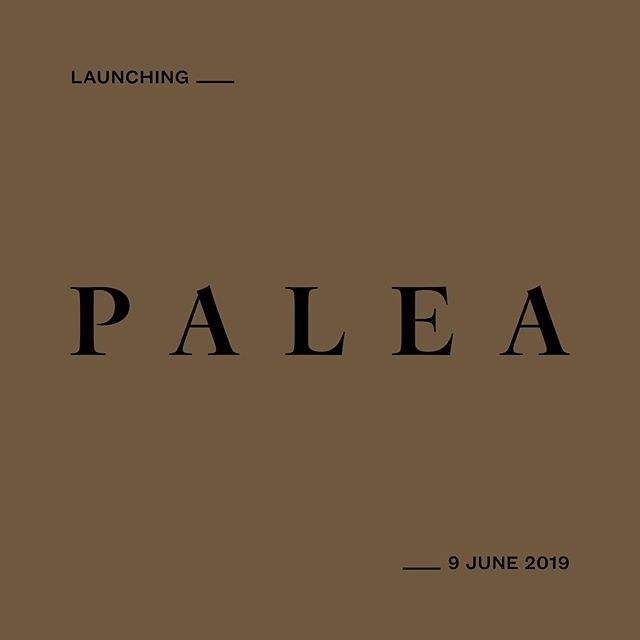 Three years ago I left my full-time job to become a freelancer. Today I'm moving on to become a business owner - I'm officially launching Studio Palea.⠀ ⠀ As a strong believer in authenticity and purpose, everything I design is born from a place of intention. Studio Palea focuses on discovering the core of each business to build personal and thoughtfully designed brands that tell a story and speak to the heart of their audience.⠀ ⠀ If you want to find out more about my new venture, I would love for you to follow @studiopalea