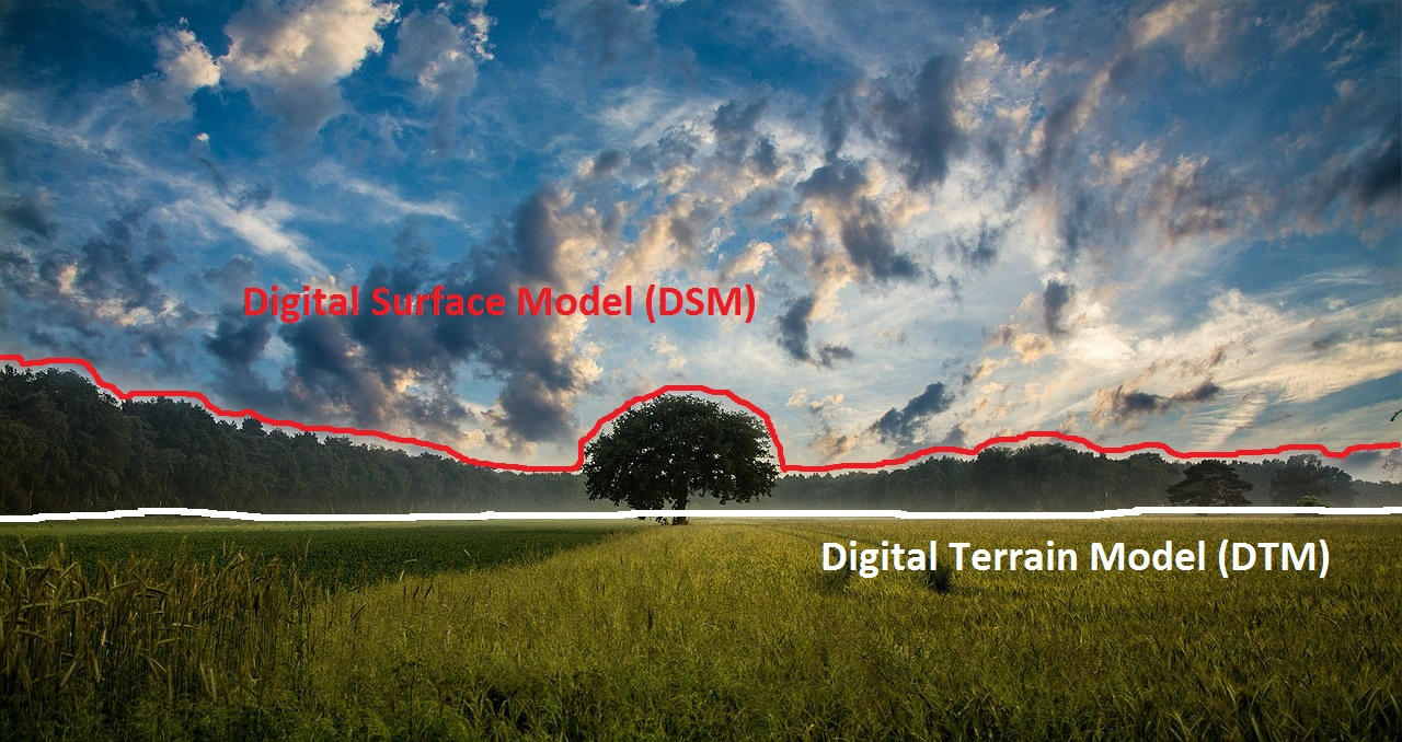 illustration of difference between dsm & dtm