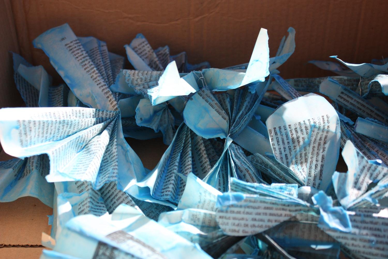 butterflies018.JPG