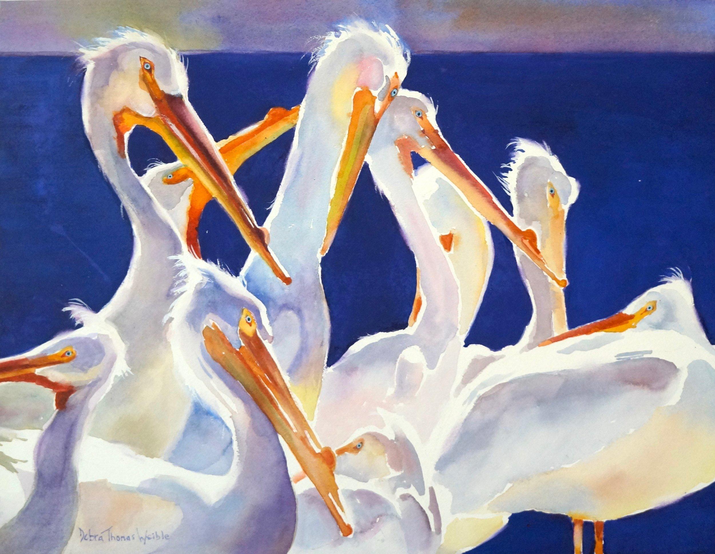 """""""Cedar Key Pelicans"""""""