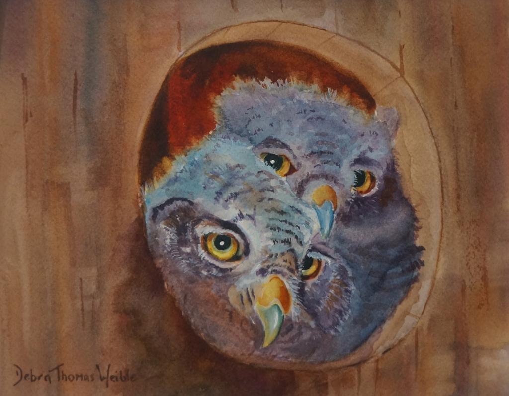 """Owlets"""