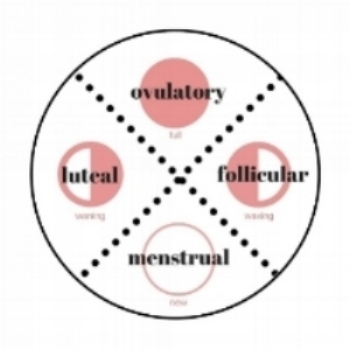 Thrive Nutrition Practice: hormonal contraception and the effects on our period