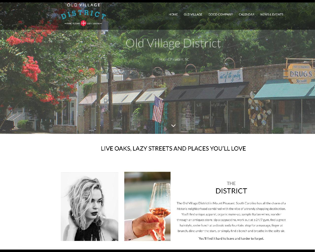 SHOPPING DISTRICT WEBSITE DESIGN (WORDPRESS):   VISIT THE SITE