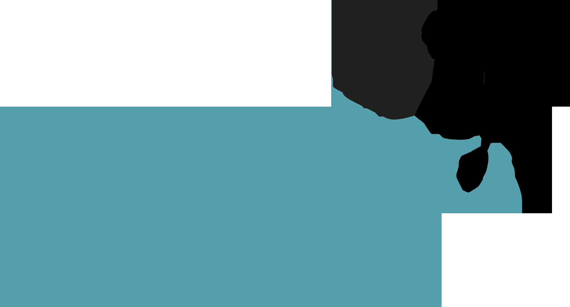 nanniified.com logo
