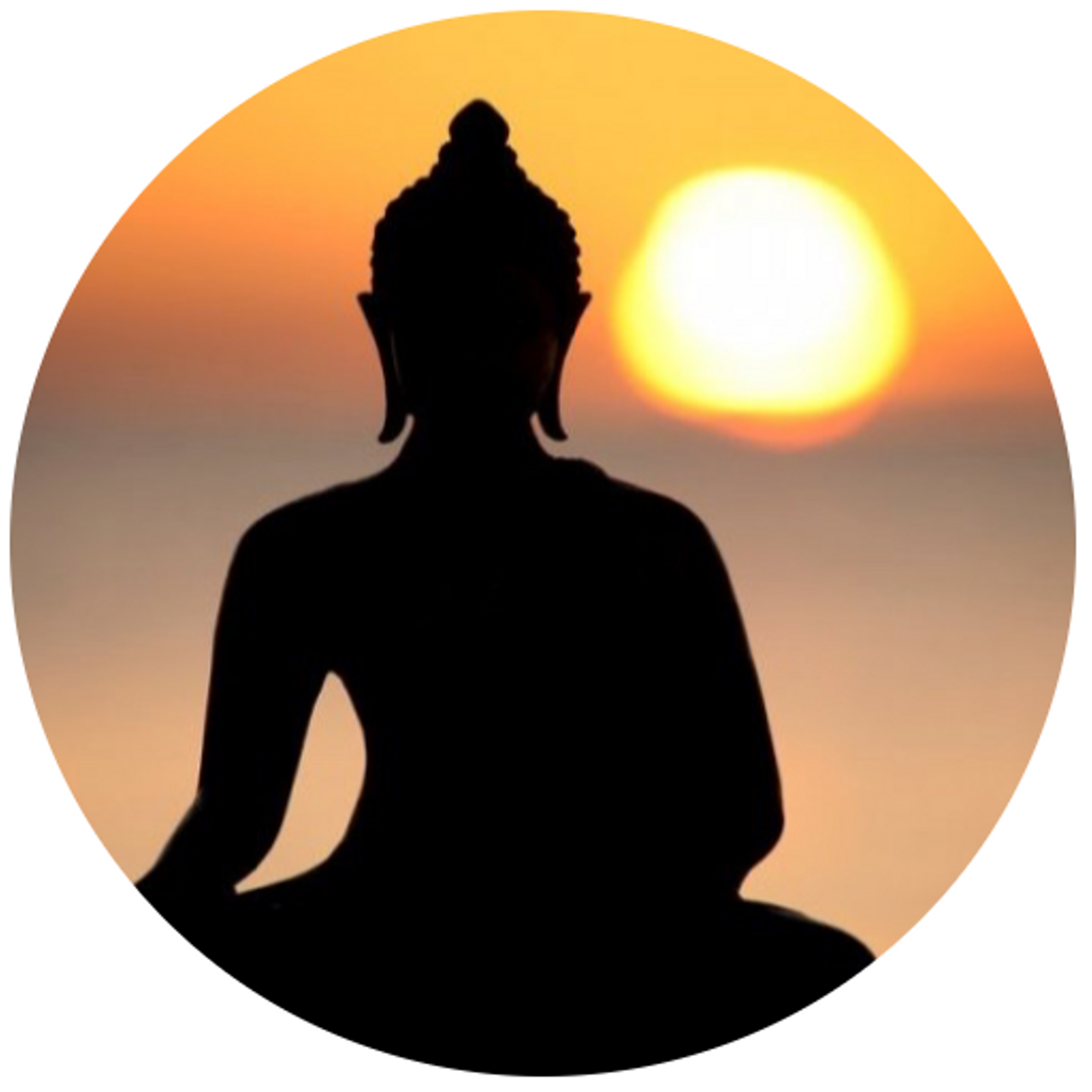 My Vipassana Meditation Retreat Experience - October 7th, 2019
