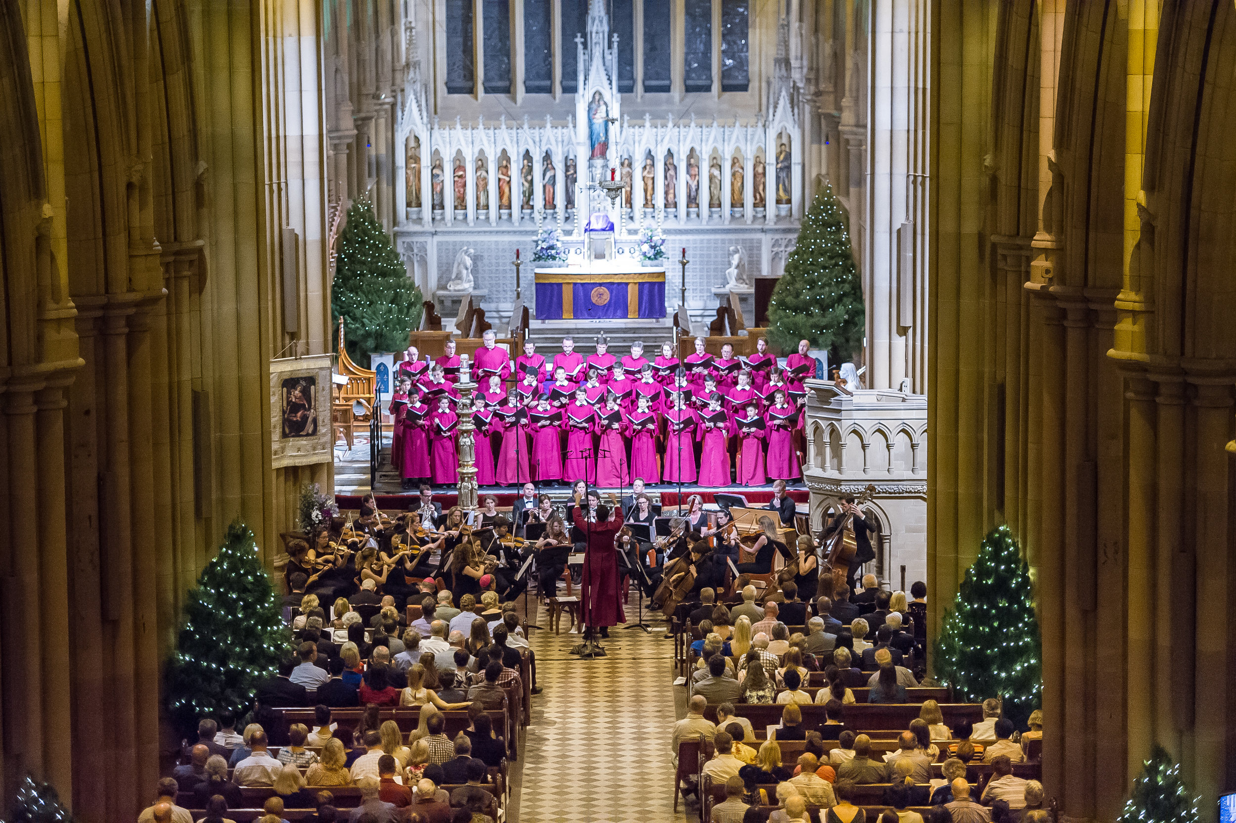Saint Mary's Cathedral Choir performing A Christmas Celebration