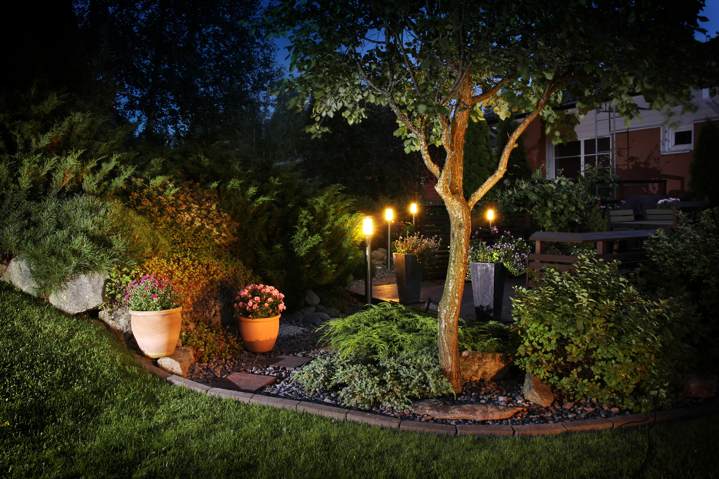 LED lighting illuminates a backyard garden