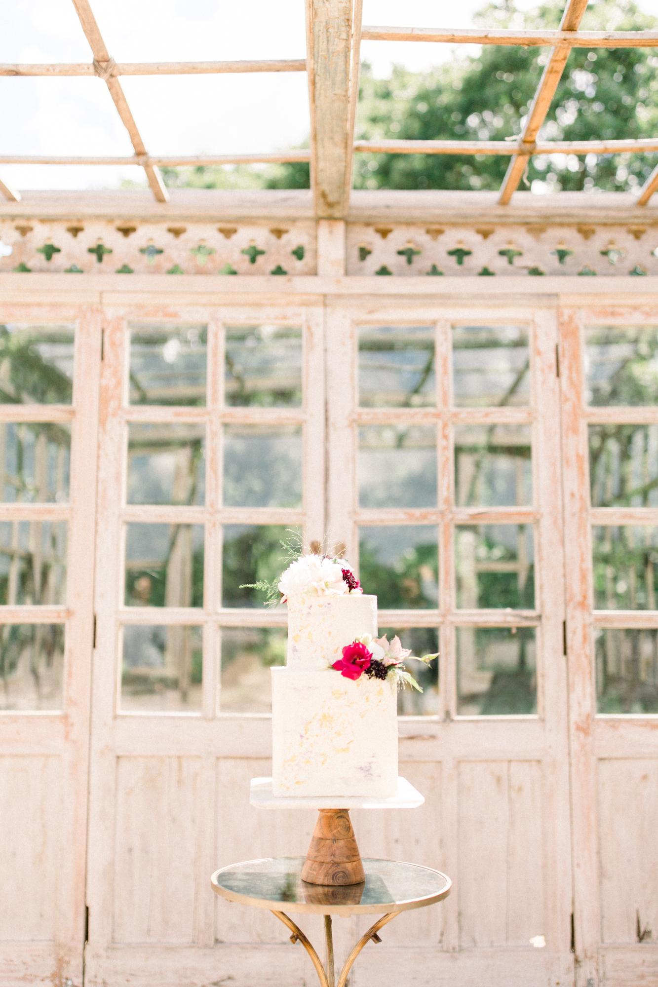 White Sparrow - Lavender Fields - Britt LaShea-1.jpg