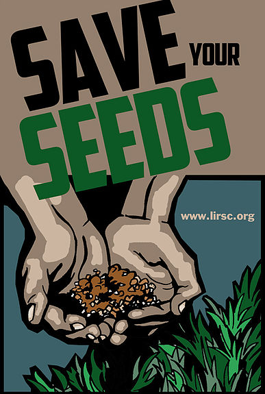 Interested in your organization starting a seed library?    Contact us for more information!