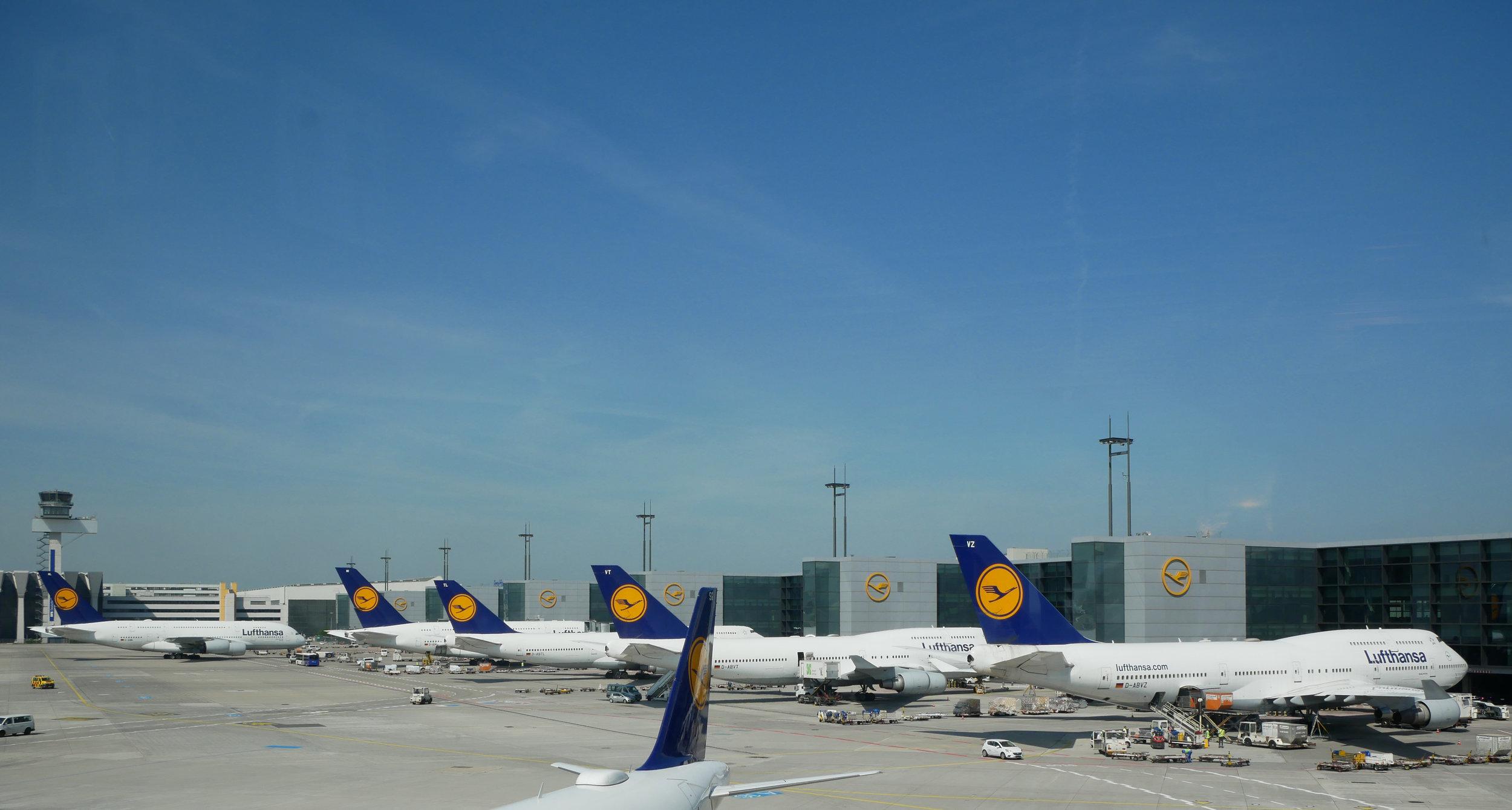 Lufthansa FRA tails