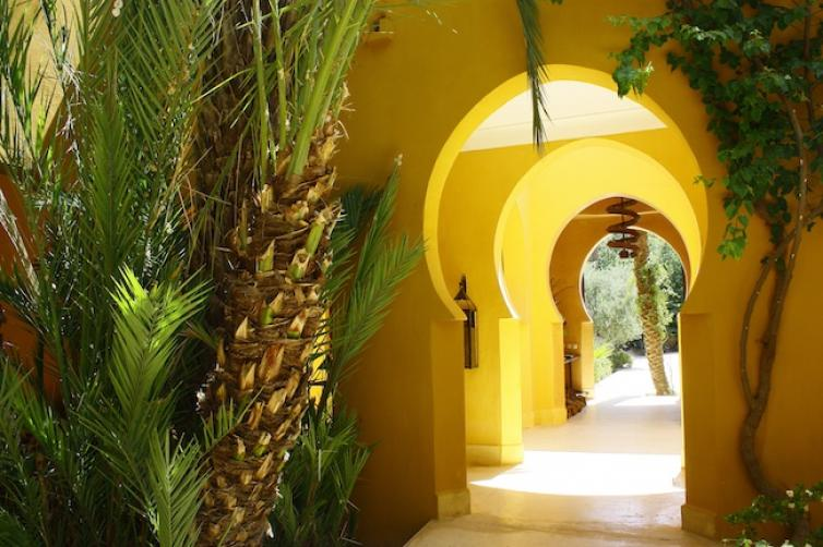 The natural greens and browns of our palm trees blend well with the glowing yellow walls of Jnane Tamsna fb .jpg